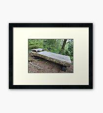 Snow White's Bed Framed Print