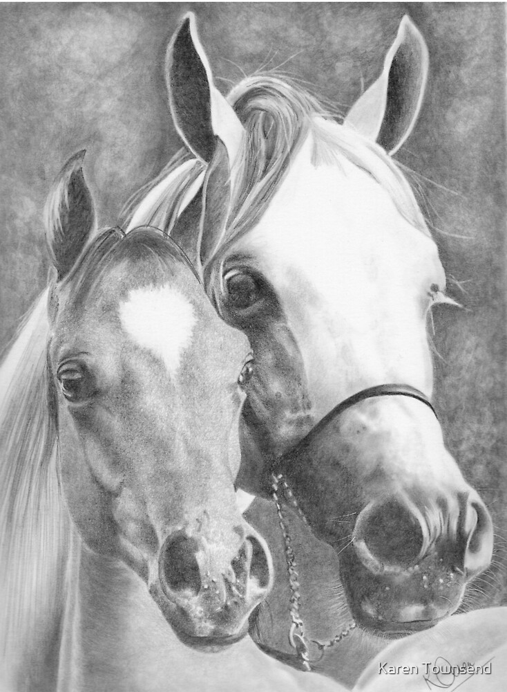 Mother and Foal by Karen Townsend
