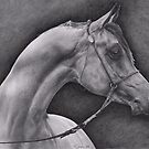 Arabian by Karen Townsend