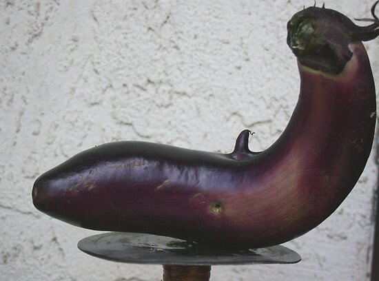 X-Rated Eggplant....... by Heather Friedman