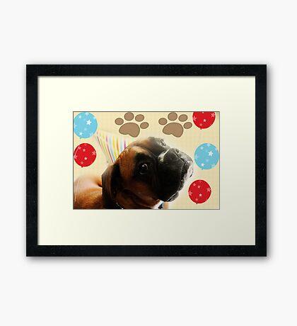 Schauen Sie, wer 1 - Boxer Dog Series ist Gerahmter Kunstdruck