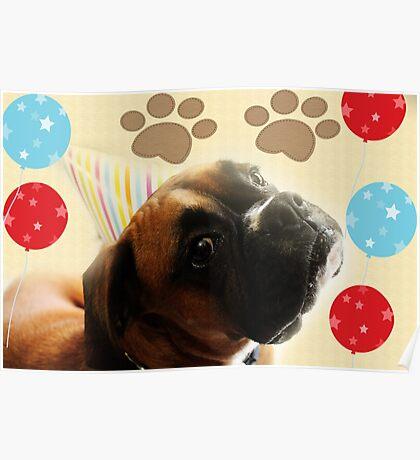 Schauen Sie, wer 1 - Boxer Dog Series ist Poster