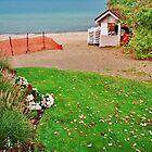A Little Late In The Season ~ Lake Michigan, USA by artwhiz47