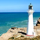 Lighthouse at Castlepoint by Barbara Caffell