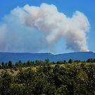Jemez Mt fire, New Mexico by F.  Kevin  Wynkoop