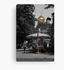 In City Park Canvas Print