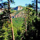 McCauley Warm Springs Trail, Jemez Mts, New Mexico by F.  Kevin  Wynkoop