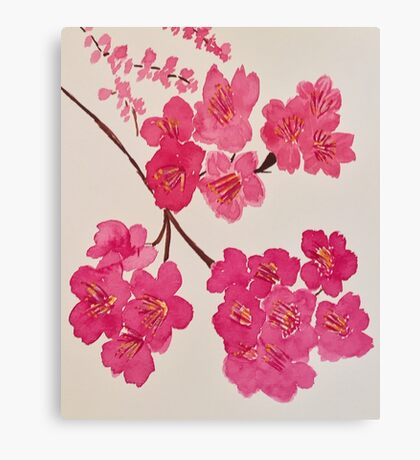 Cherry Blooms Canvas Print