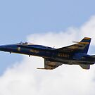 Solo Blue Angel by Henry Plumley