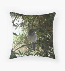 scrub jays Throw Pillow