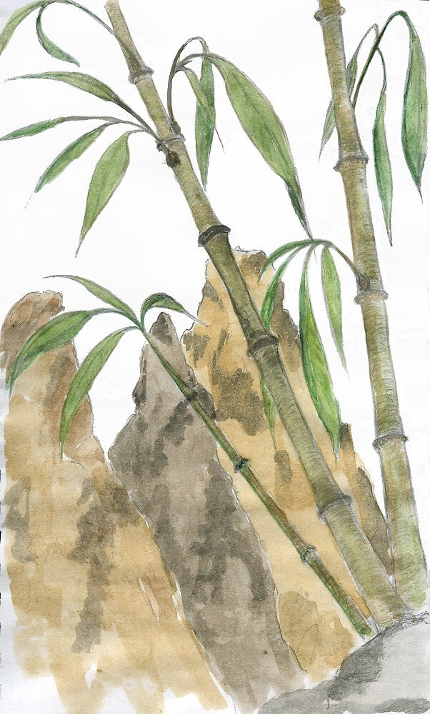 Bamboo by brushmarq