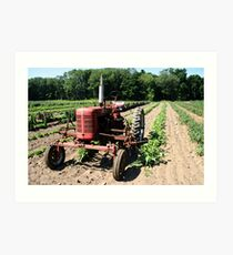 Farmall Super C Tractor Art Print