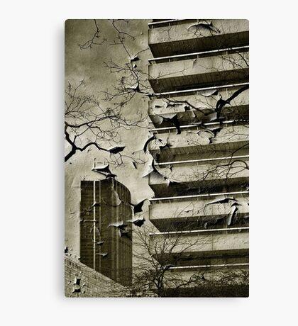 Paris - Plaisance #6 Canvas Print