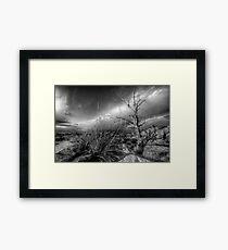 Tree Noir Framed Print