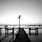 The single pier by Ray Yang