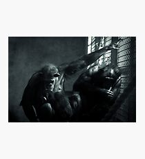 Captivity Photographic Print