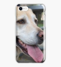 Happy Lab iPhone Case/Skin