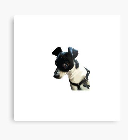 Carl the Rat Terrier Metal Print