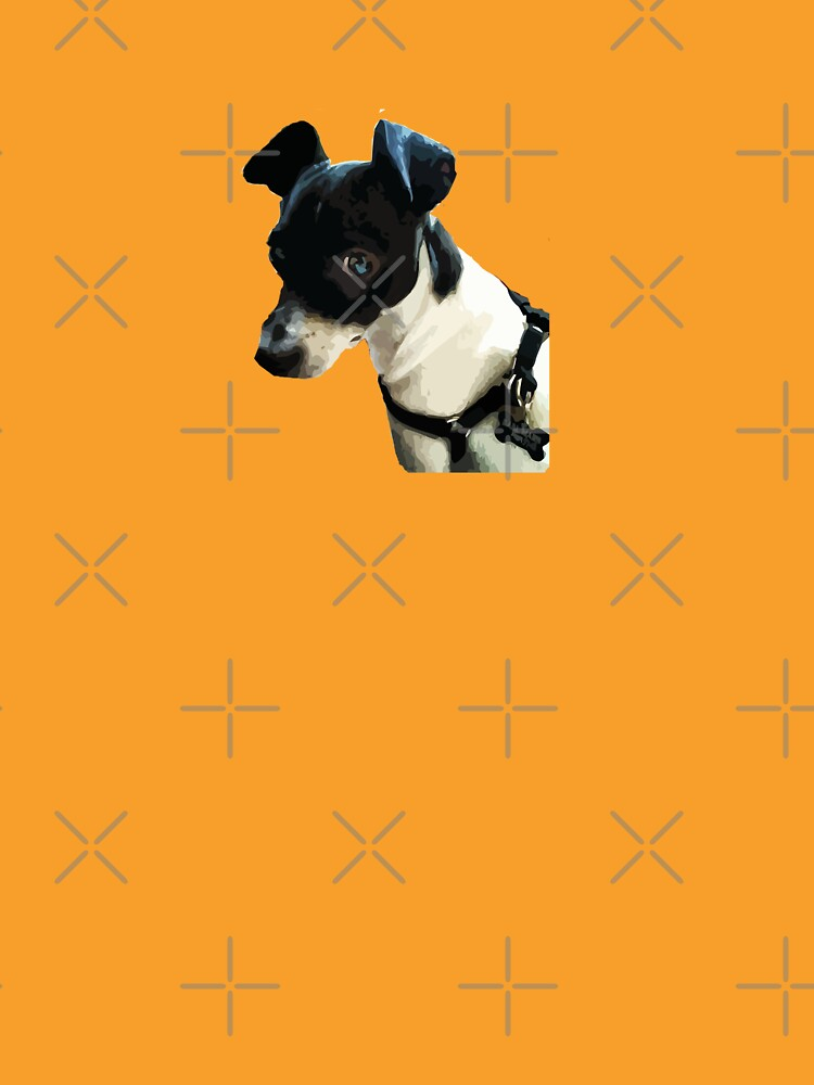 Carl the Rat Terrier by willpate