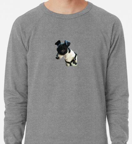 Carl the Rat Terrier Lightweight Sweatshirt