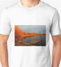 Lake Devonian Unisex T-Shirt