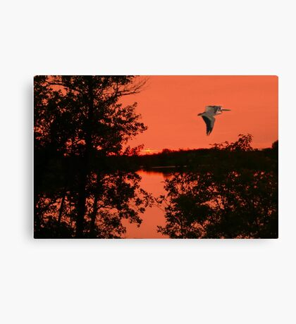 In the Still of the Night Canvas Print