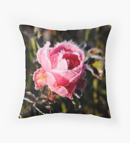 A frozen moment in time. Throw Pillow