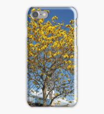Epcot Tree iPhone Case/Skin