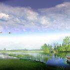 Country Boat by Igor Zenin