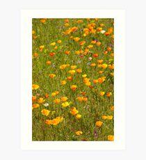 Godolphin Meadow Garden Art Print