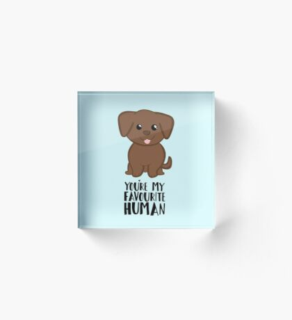You're my Favourite HUMAN - Chocolate Labrador - Gifts from dog Acrylic Block