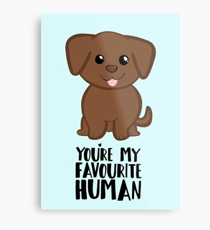 You're my Favourite HUMAN - Chocolate Labrador - Gifts from dog Metal Print