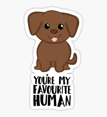 You're my Favourite HUMAN - Chocolate Labrador - Gifts from dog Sticker