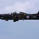 Tucano by SWEEPER