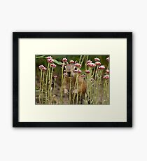 Precious Moments (#5 of 9) Framed Print