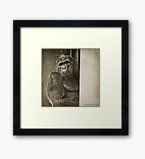 Oscar Jonesy - A Portrait Framed Print