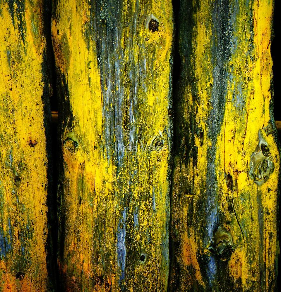 patina by moyo