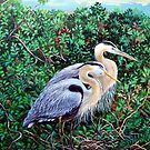 Morning Refuge-Great Blue Heron by cyberhighwaymen