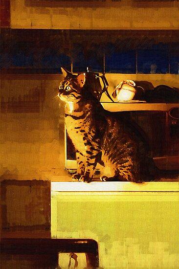 Window Gazer by Sandra Chung