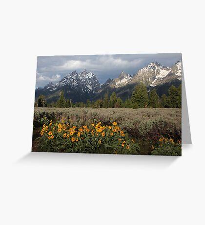 Grand Teton & Mule's Ears Greeting Card
