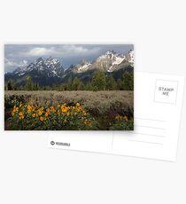 Grand Teton & Mule's Ears Postcards