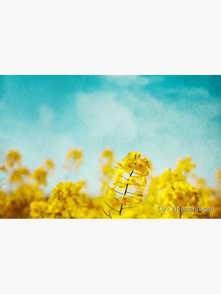 SpringTime by DyrkWyst
