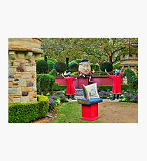 Story Book Garden Photographic Print