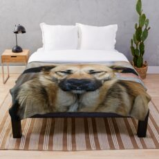 Dog, street dog Throw Blanket
