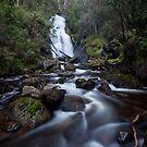 Snobs Creek Falls by Travis Easton