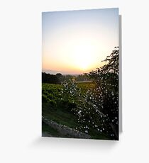 sunrise with white flowers in the foreground Greeting Card
