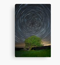 Tree Star Trail in the Burren, Co Clare, Ireland Canvas Print