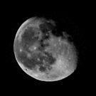 La Luna Noir by elledeegee