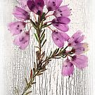Floral tapestry  by DaveBassett