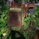 RUSTY JOHN DEERE by Larry Trupp